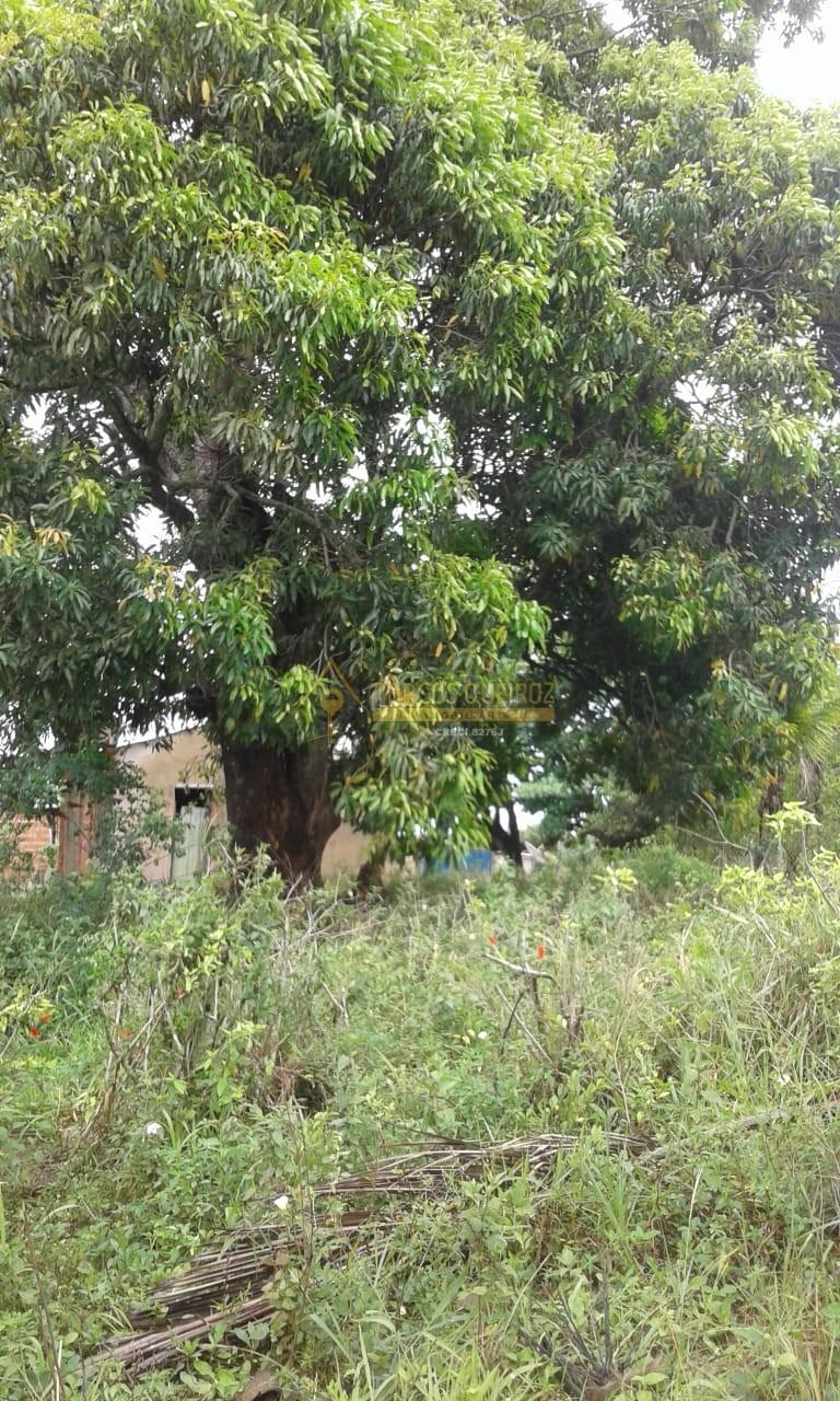 Cod: V548 Oportunidade! Lindo terreno plano estilo sítio em São Vicente – Araruama